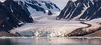 Nesten 40 isbreer på Svalbard har våknet