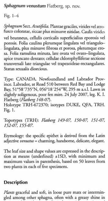 Den latinske beskrivelsen av mosen Sphagnum venustum, beskrevet av K. I. Flatberg. (Foto: Kristian Hassel)