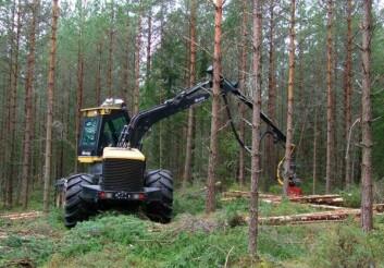Maskinell tynning med flertreaggregat. Aggregatet er fleksibelt. Det kan håndtere trær enkeltvis eller i bunter, og er egnet til å håndtere ulike sortiment. Sagtømmer, massevirke og småvirke til energi kan dermed høstes i samme operasjon. (Foto: Gunnhild Søgaard/Skog og landskap)