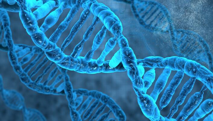 Illustrasjonen viser en modell av DNA-molekylet, som er formet som en slags tvinnet taustige. Trinnene i stigen representerer bokstaver som beskriver genene våre.