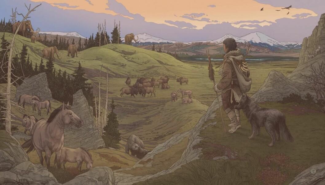 De tidlige menneskene som dro til Amerika hadde trolig selskap av hunder, ifølge en ny studie.