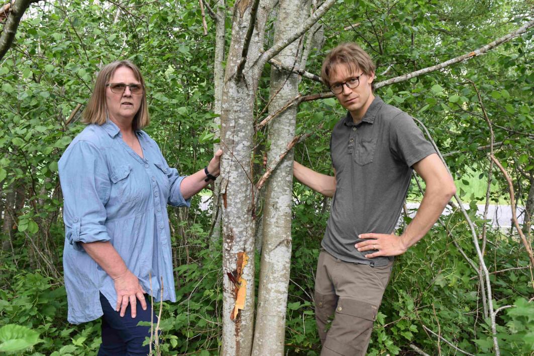 Forskerne Venche Talgø og Martin Petterson ved NIBIO har klare råd til oss alle for å unngå spredning av plantedreperen Phytophthora.