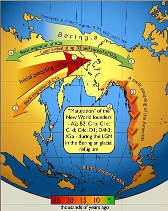 """Mennesker dro til Amerika over en """"bro"""" av land som knyttet sammen Sibir og Nord-Amerika."""