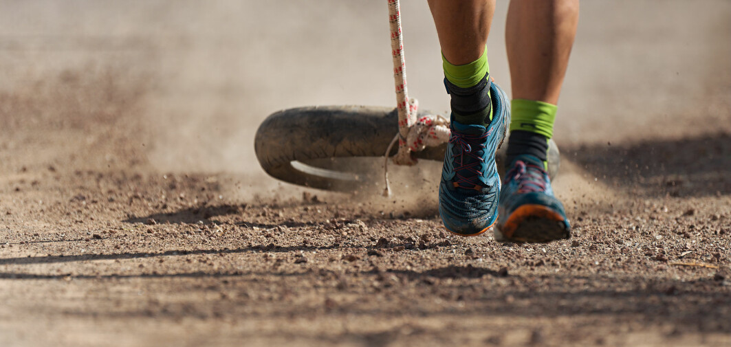 Dekktrening er en treningsform som passer for de som er glad i å være ute og gå på tur og samtidig ønsker seg litt større utfordringer og resultater av treningen.