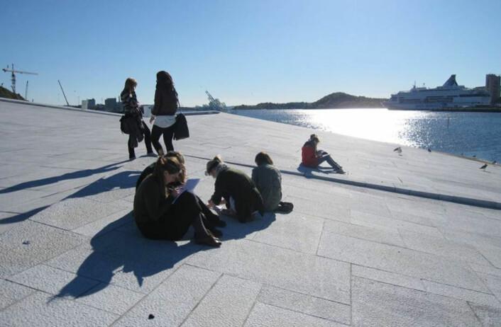 Elever i geofag skal avgjøre hvilken bergart de selv ville valgt for operabygget i Oslo. (Foto: Kari Beate Remmen)