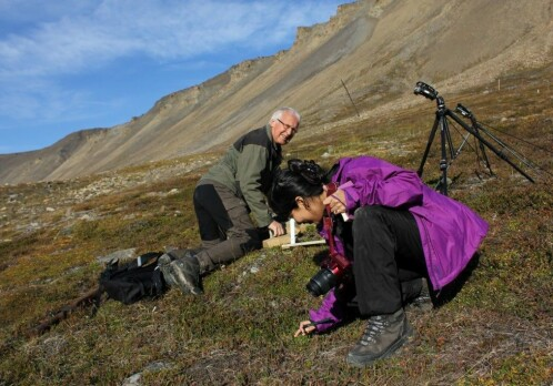 Norwegian researchers reject that Northern Norway is part of the Arctic