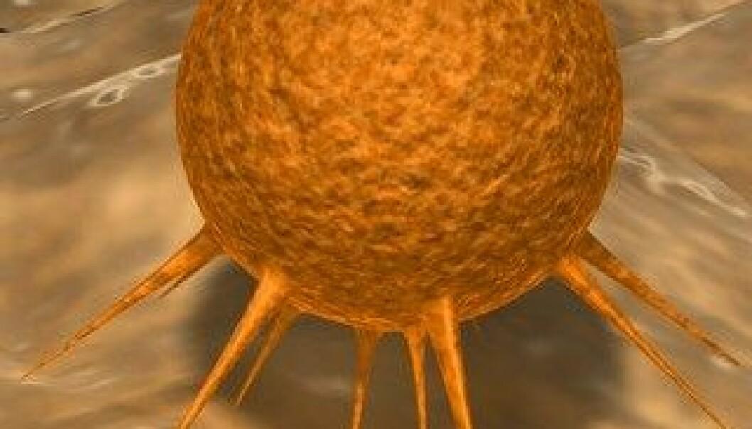 Mening bak bisarr cellemekanisme