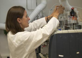 Forsker Katherine Langford analyserer spor av rottegift i lever fra rovfugl. Foto: Bjørn Faafeng