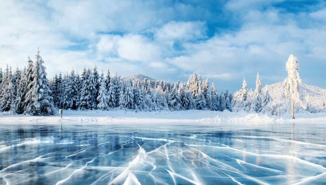 Frossen innsjø. Isen kan knake og drønne, men er det farlig?