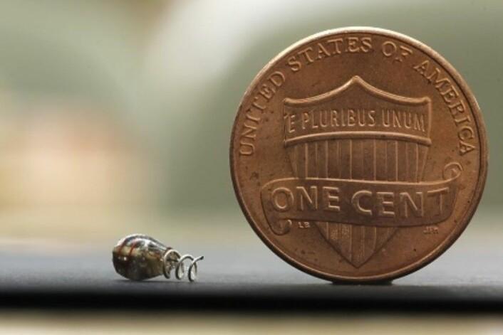 Den lille enheten kan festes stort sett over alt i kroppen. (Foto: Austin Yee/Stanford University)
