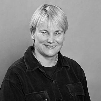 Anne-Cathrine Flyen, NIKU.