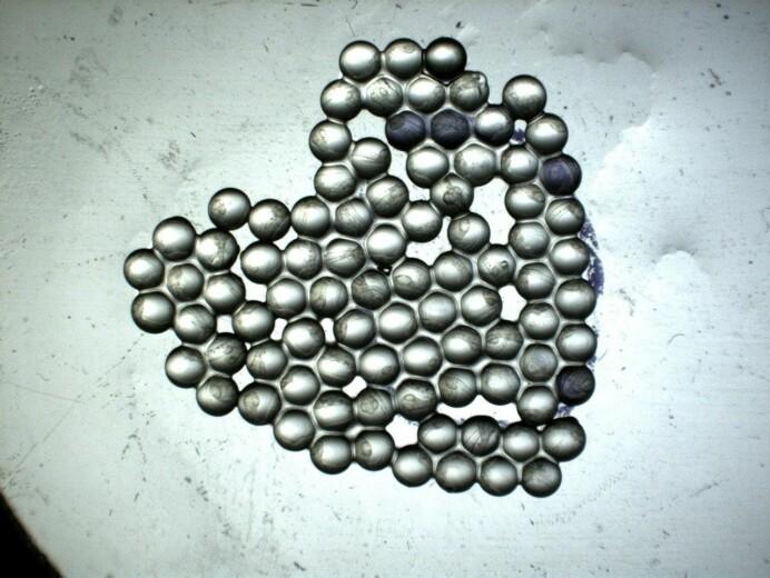 Disse eggene ble eksponert for olje og er på vei til kjemianalyse, men danner like fullt et vakkert hjerte.