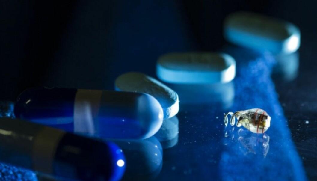 Et implantat på størrelse med et riskorn kan fungere som en pacemaker. Austin Yee/Stanford University