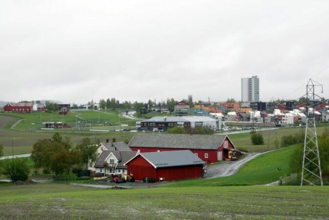 Berre 3,5 prosent av samla landareal i Noreg, utanom Svalbard og Jan Mayen, er jordbruksareal. Skog dekker 37,4 prosent, fjell og vidde 45,9 prosent.