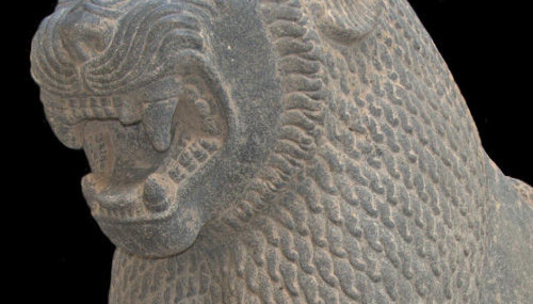 Løve funnet under utgravinger øst for Antakya. Jennifer Jackson