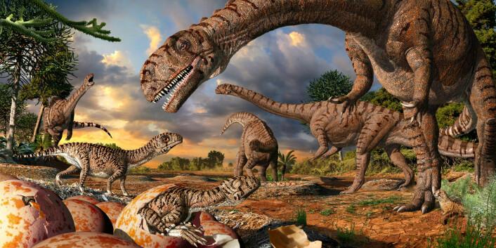 Slik kan det ha sett ut i rugekassa til massospondylus-dinosaurene, som levde for 190 millioner år siden.  (Illustrasjon: Julius Csotonyi)