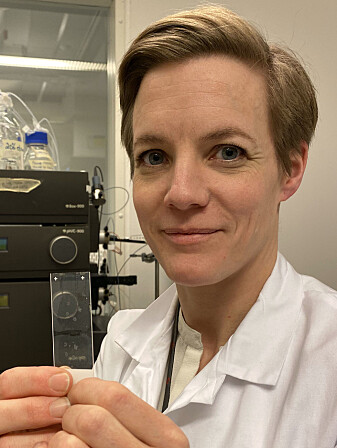 Jorunn Stamnæs, researcher at UiO and administrative coordinator of the KG Jebsen Coeliac Disease Research Centre.