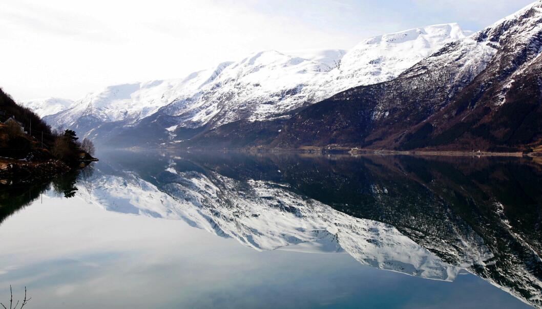 Forskere skal ved hjelp av lyttebøyer finne ut hvordan nisebestanden i Hardangerfjorden lever. Bildet er fra Sørfjorden, en arm av Hardangerfjorden.