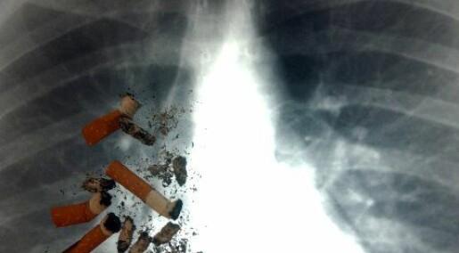 Kvinner mer utsatt for lungekreft