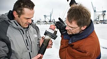 Oppdagelsen av kabelbakterier i Danmark blir mer og mer utrolig