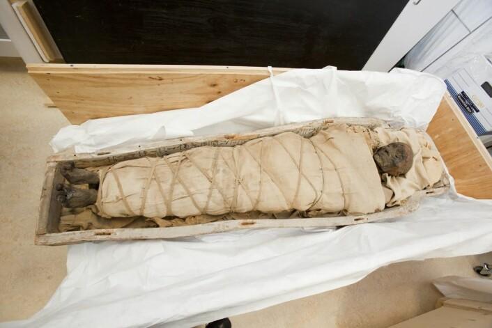 Her ser man den 1 700 år gamle mumien. Dette bildet er tatt like før en skanning ved Montreal Neurological Institute. (Foto: Nicolas Morin)