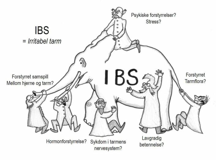 IBS-elefanten. (Foto: (Illustrasjon: Jørgen Valeur))