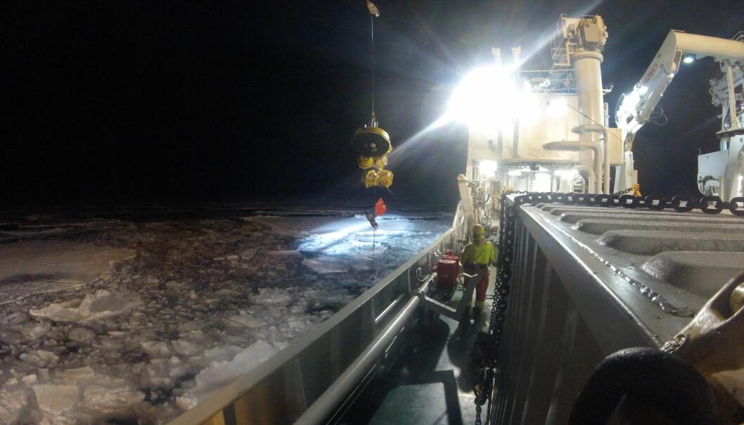 Forskere i arbeid ombord FF Kronprins Haakon