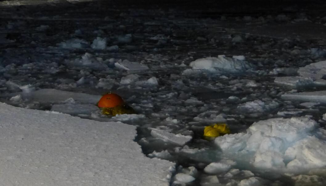 Rigger i Barentshavet