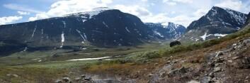 Forskerne er bekymret for at drivstoffet skal spre seg ut i naturen nedenfor fjellet. Der kan det komme inn i næringskjeden og gjøre skade på både dyr og folk. (Foto: Johan Schagerström/Wikimedia Common)