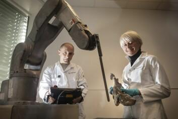 Marit Aursand og Ekrem Misimi på Sintef er fornøyde med sin 6-akse robot som har verktøy-kniv montert på armen. Robotarmen kan brukes for å automatisere ulike operasjoner i fiskeindustrien - som trimming av filet og bløgging av fisk. (Foto: Thor Nielsen)