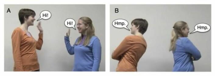 Bilde A er tatt fra filmklippet hvor de to voksne uttrykker vennskap. Bilde B er tatt fra filmklippet hvor de to voksne vender ryggen til hverandre. (Foto: The University of Chicago)