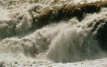 """""""At elver i blant annet Nord-Europa blir brunere, kan forklares med en kraftig reduksjon i mengden sur nedbør siden 1970-tallet, ifølge et internasjonalt forskerteam."""""""