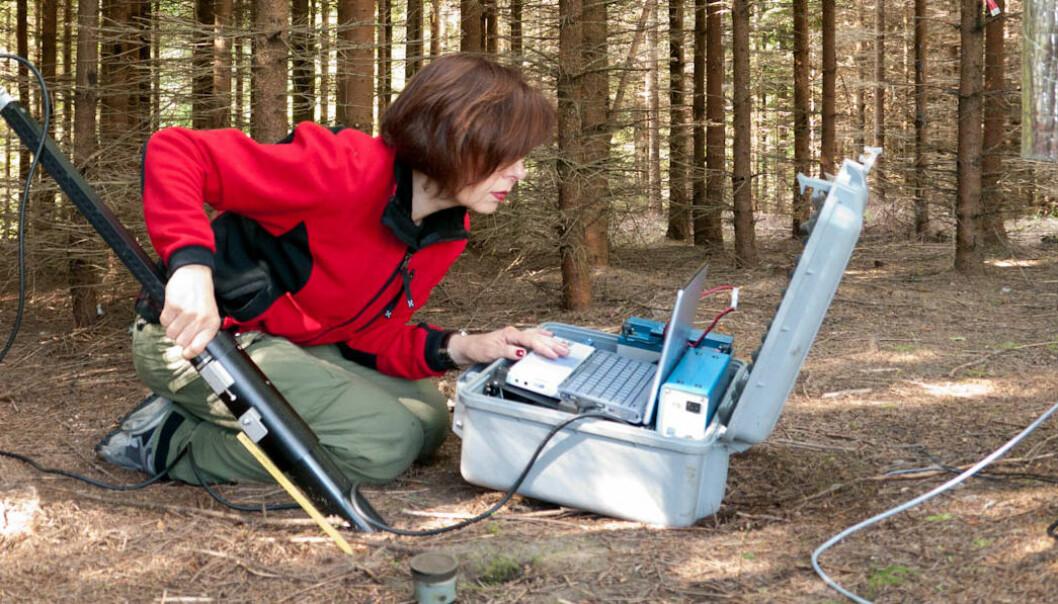 Isabella Børja ute i felten, i ferd med å ta et bilde av trerøtter. Nina Nagy