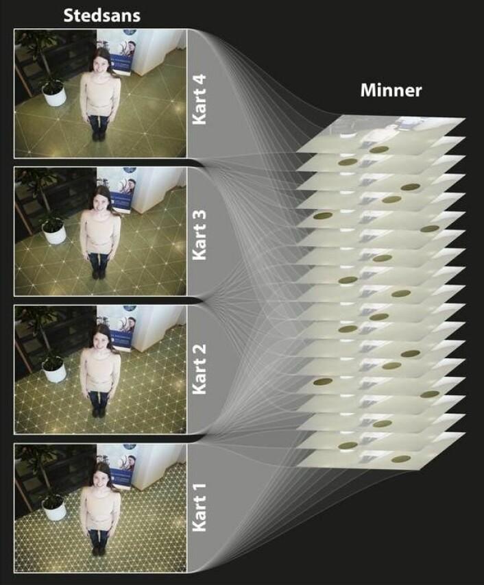 Stedssansen består av flere separate gitterkart, hvert med unike egenskaper. Hvert kart har helt spesifikk oppløsning (maskestørrelse) og påvirkes forskjellig av miljøendringer. Et system med flere uavhengige kart (illustrert til venstre i grafikken) kan skape store mengder unike kombinasjonskoder og brukes til å assosiere hvert minne med spesifikk stedsinformasjon (høyre side av grafikken). (Foto: (Grafikk: Tor Stensola))