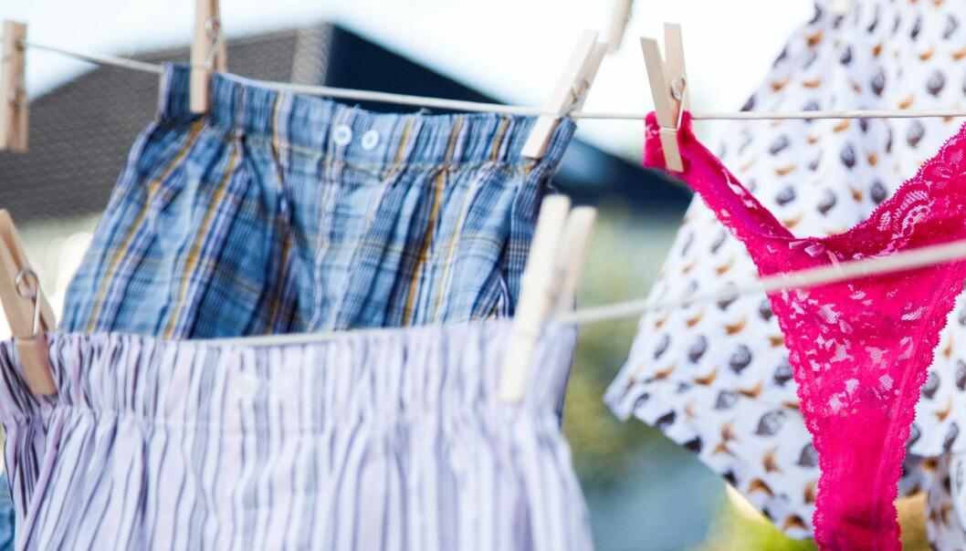 Tørkar du kleda på tørkesnor i staden for i trommel sparar du klimaet og lommeboka. Colourbox