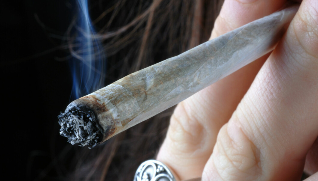 Forskere ved Cambridge University ville se om mye cannabisbruk i tenårene påvirket ungdommenes evne til å tenke, konsentrere seg og lære.