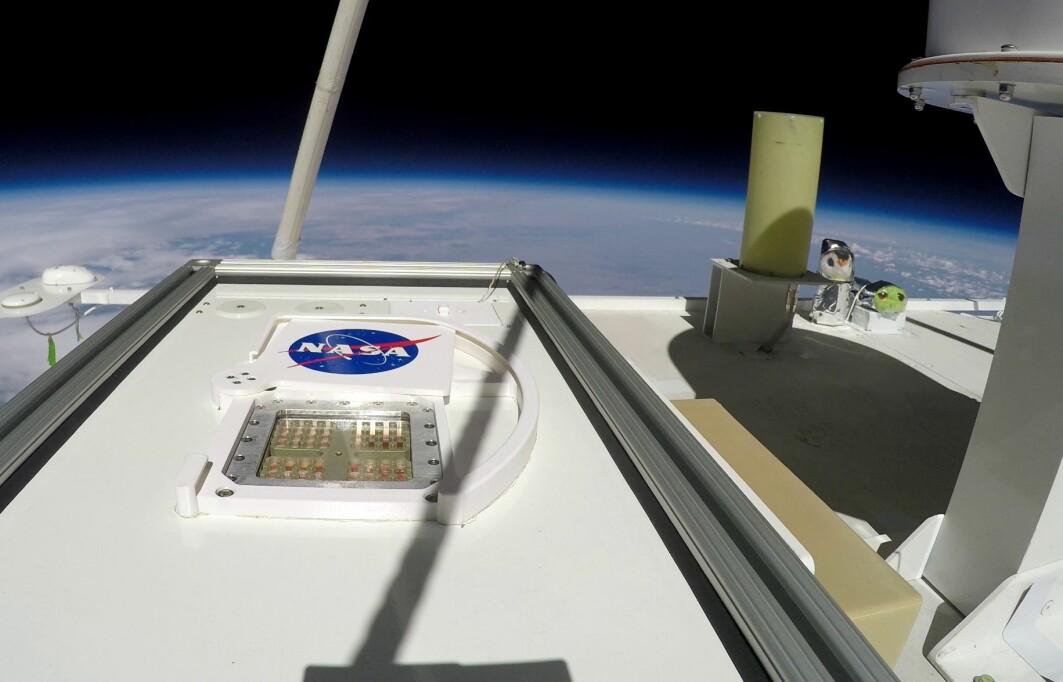 Her kan du se de små prøvene i den lille boksen på utsida av ballongen, 38 kilometer over jordoverflata.