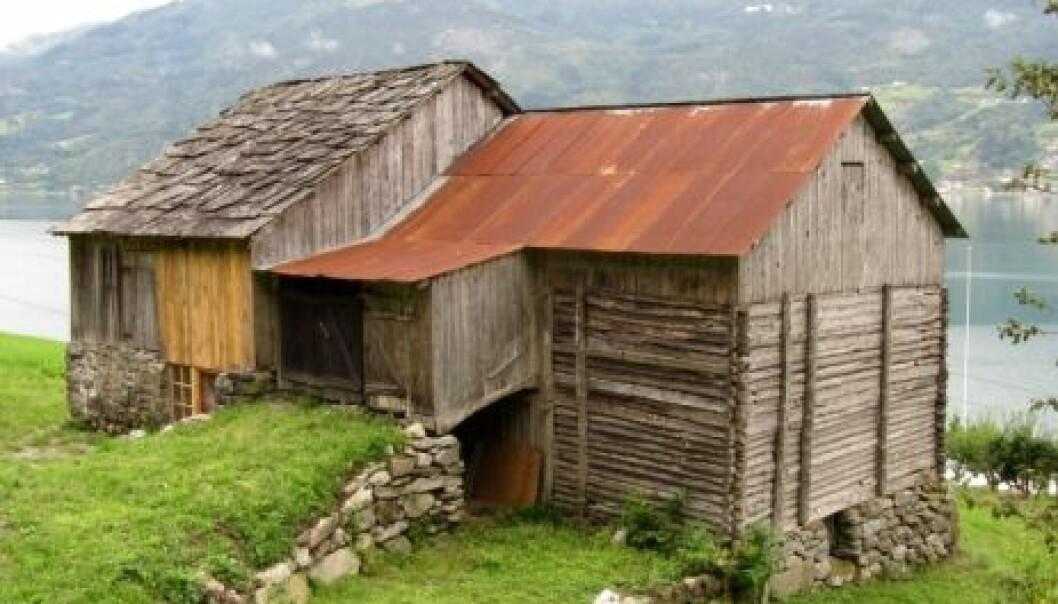 Ved siden av bolighus dominerer driftsbygninger og stabbur i SEFRAK-materialet på 3Q-flatene. Eksempel fra Luster i Sogn og Fjordane. Kari Stensgaard/Skog og landskap