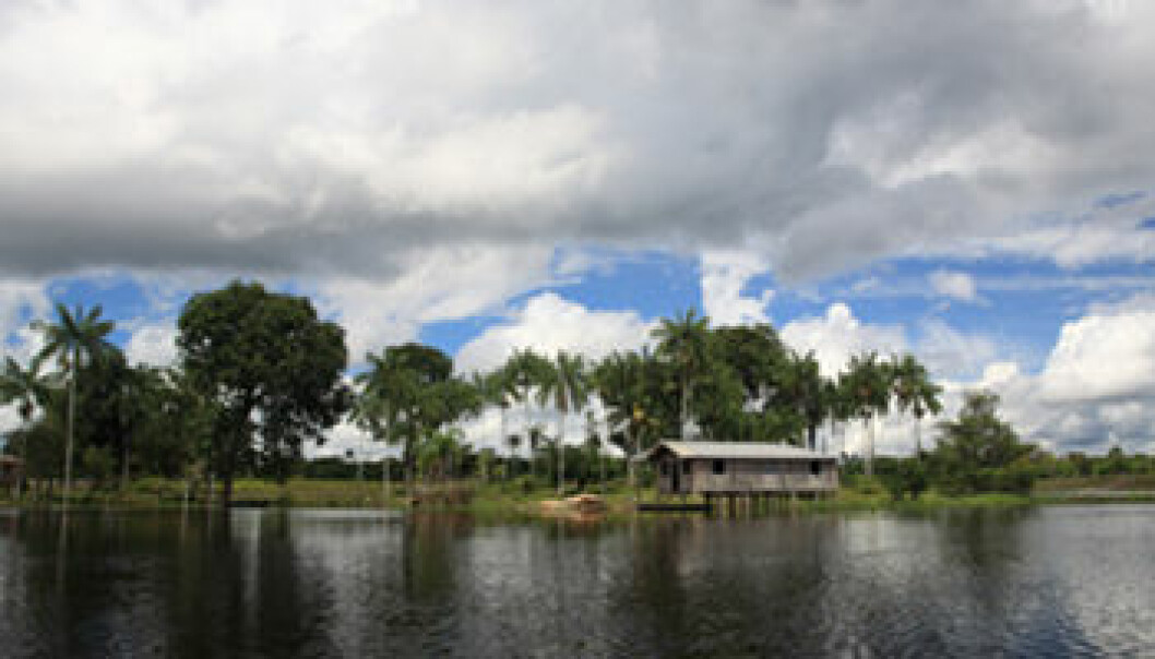 Amazonas. iStockphoto