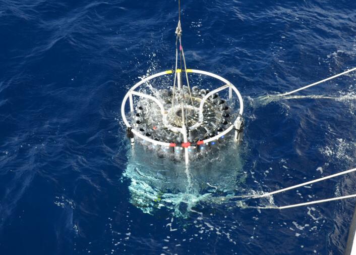 Forskerne tok prøver av havvann for å se om de kunne finne vesikler i det fri. Her i Sargassohavet, desember 2012. (Foto: Steven Biller)