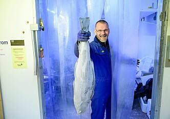 Colder frozen fish, please