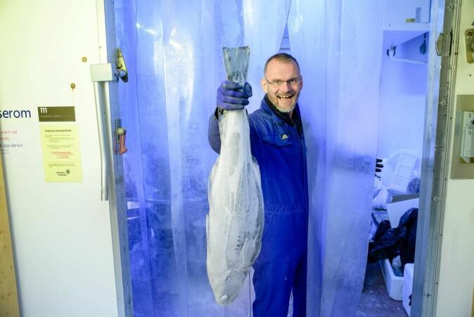 Vanlig frysetemperatur er ikke kaldt nok for lagring av fisk. Lavere frysetemperatur kan gjøre en stor forskjell, sier Svein Kristian Stormo.