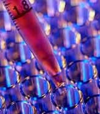 Mange land drømmer om suksess i bioteknologi, også Norge.