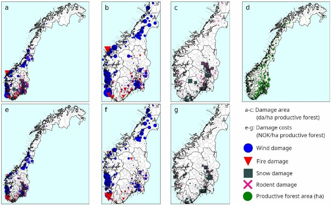 Hvor i landet blir skogen skadet? Og hvilke skader? Basert på tall fra Skogbrand