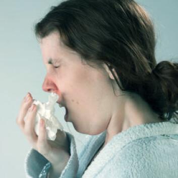 Forkjølelse er en av verdens vanligste sykdommer. (Illustrasjonsfoto: iStockphoto)