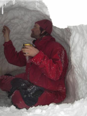 Isbjørnforsker Jon Aars samler isbjørnhår i et forlatt hi. (Foto: Øystein Overrein / Norsk Polarinstitutt)