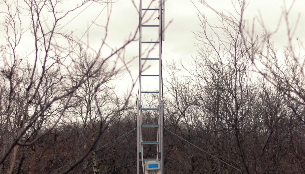 """""""Klimatårn i Abisko, Sverige. Bioforsk ønsker å bygge et lignende tårn i Pasvikdalen, Øst-Finnmark. Foto: Paul Eric Aspholm.>"""