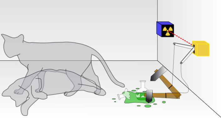 Schrödingers katt: Et radioaktivt atom vil enten spontant sende ut en partikkel, eller ikke. Utfallet er usikkert. Partikkelen vil eventuelt utløse en geigerteller, som knuser en giftampulle som dreper katta. (Foto: (Illustrasjon: Dhatfield / wikimedia commons))