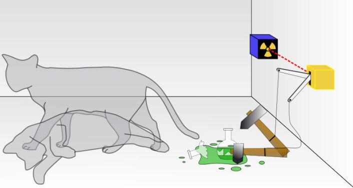 Schrödingers katt. (Foto: (Illustrasjon: Dhatfield / wikimedia commons))