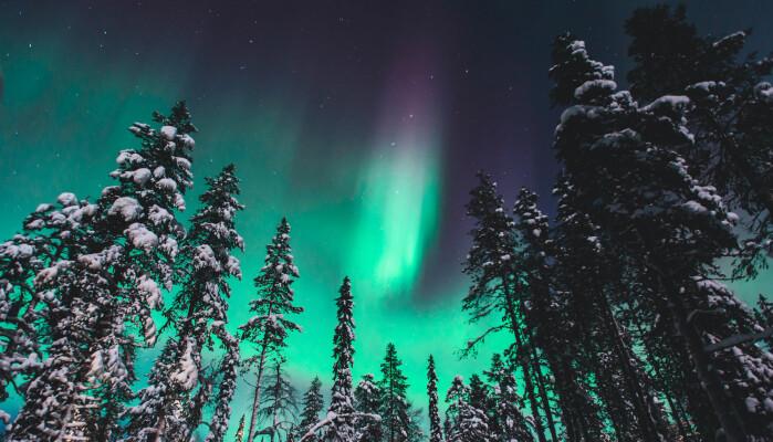 Menneskene som levde for 41 000 år fikk se mye nordlys, ifølge forskningen.